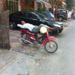 Another Precariously Balanced Sleeping Moto Dop