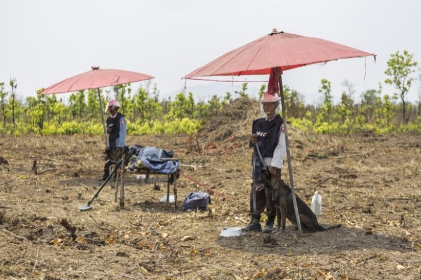 No death from mines for one month. Cambodian record.