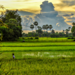 Stunning Siem Reap, Cambodia.
